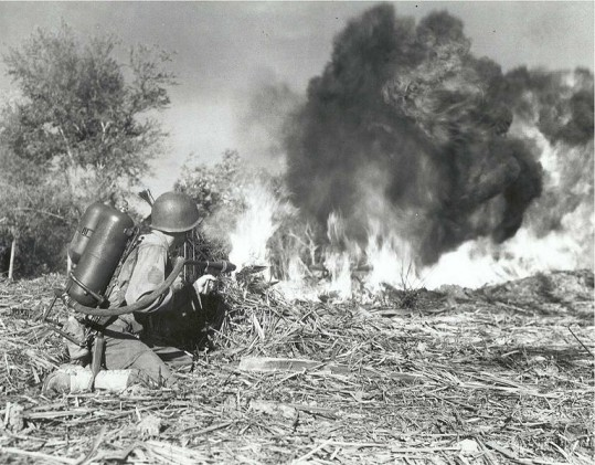 U.S. soldier of the 33rd Infantry Division using a flamethrower.
